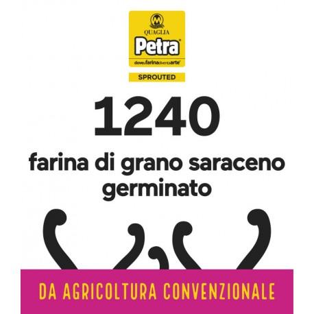 1240 BRICK - FARINA DI GRANO SARACENO GERMINATO