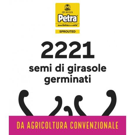 2221 BRICK - SEMI DI GIRASOLE GERMINATI