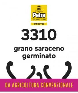 3310 BRICK - GRANO SARACENO GERMINATO
