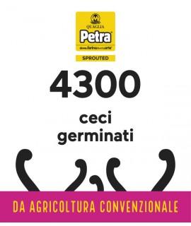 4300 BRICK - CECI GERMINATI