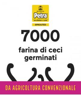 7000 BRICK - FARINA DI CECI GERMINATI