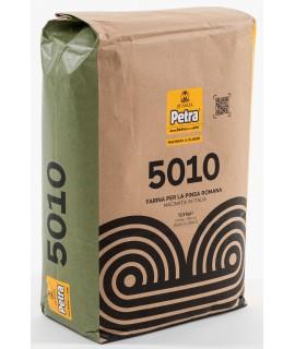 PETRA 5010